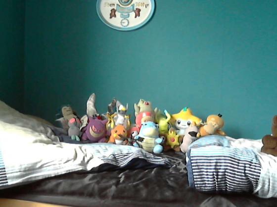 Meine Pokemon