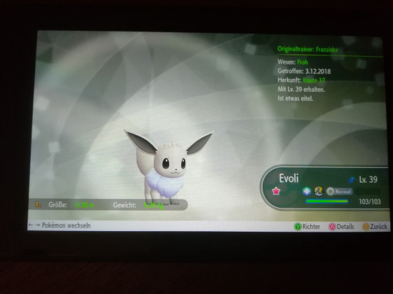 Shiny Evoli #1
