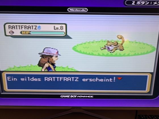 Schillerndes Rattfratz - Blattgrüne Edition