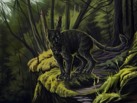 Rajani ~ Forest Predator