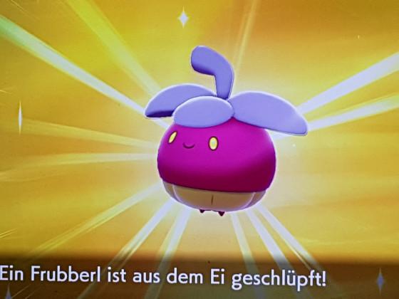 Shiny Frubberl