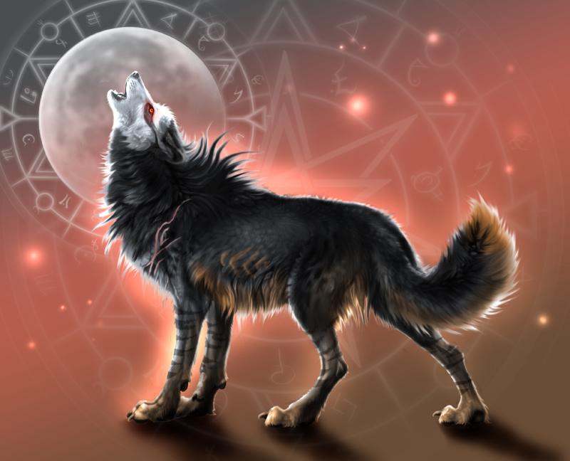 Tala ~ Moon Howl