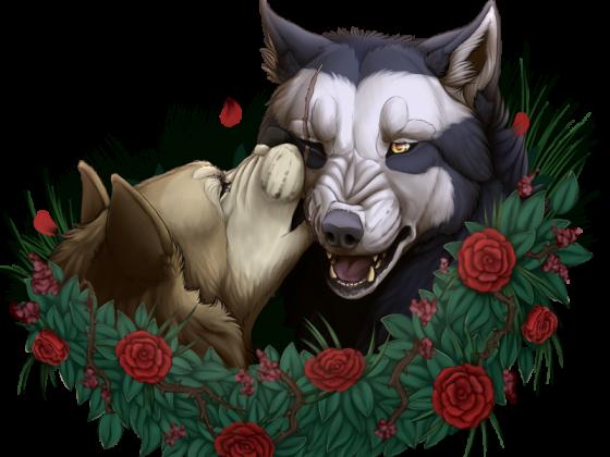 Akira & Tala ~ Kiss from a rose