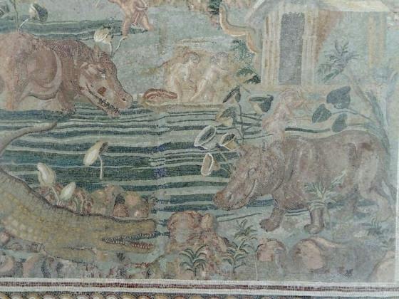 Hippo-Mosaik