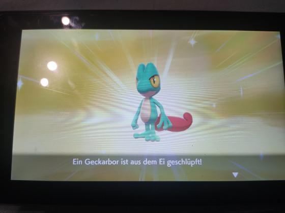 Shiny Geckarbor
