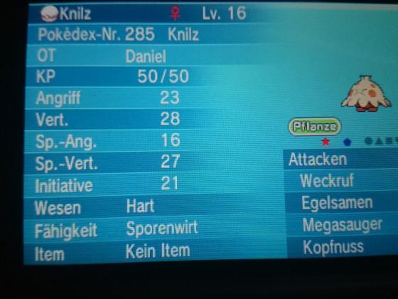 Shiny Knilz