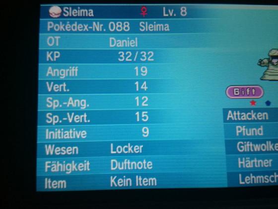 shiny Sleima