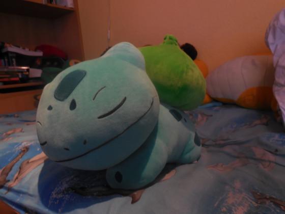 Mein Schlafendes Bisasam :)