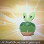 Shiny Knapfel