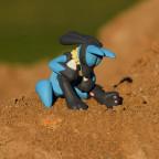 16-008.2 Lucarios desert rest