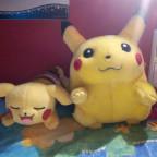 Pikachu Kuscheln