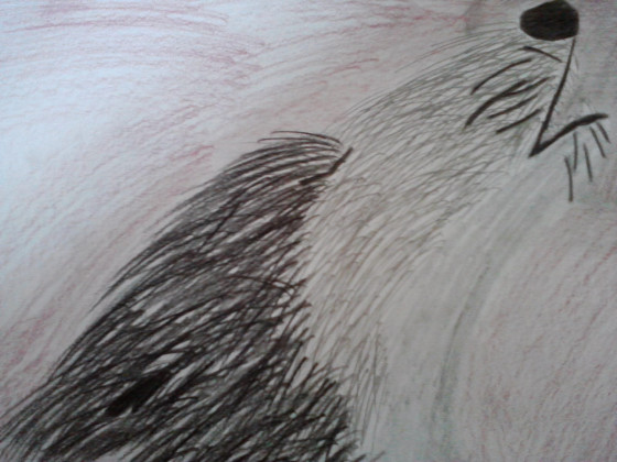 Heulender_Wolf