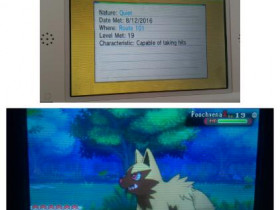 Mein 9. wildes Shiny in OmegaRubin *-* (12. August 2016)