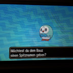 Shiny Bauz :)