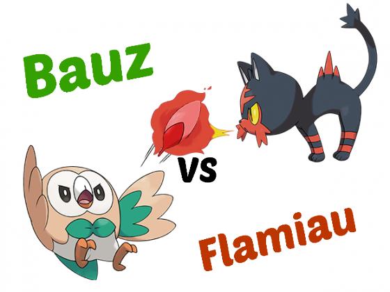 Bauz VS Flamiau
