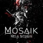 Cover Mosaik Klein