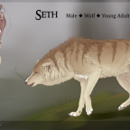 Seth ~ Reference Sheet