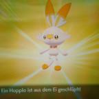 Shiny Hopplo