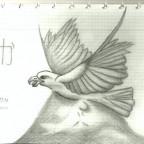 Taka (Washi)