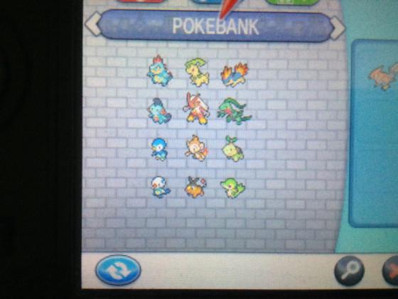 PokeBank-Pokemon