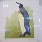Pinguin 3