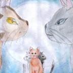 Warrior-Cats colo