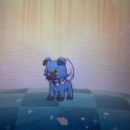 Shiny Wuffels mit Tempomacher