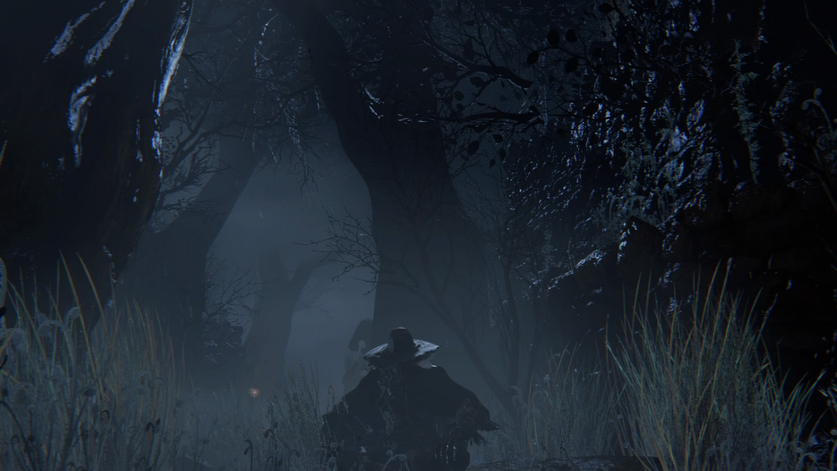 Bloodborne - Chillin in the wood