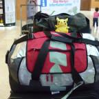 Pikachus reise in die türkei