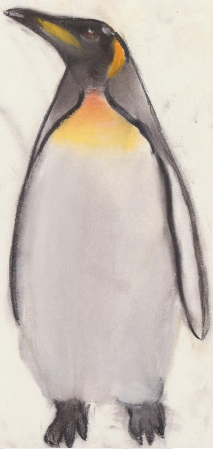 Pinguin 3.0