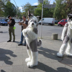 Fursuitwalk Berlin Foto 2