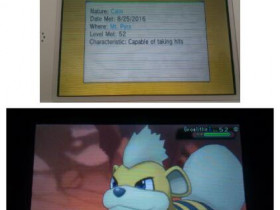Mein 24. wildes Shiny in OmegaRubin *-* (25. August 2016)