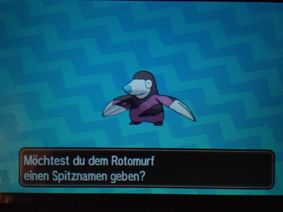 Shiny Rotomurf :3