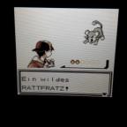 Random Shiny Rattata!