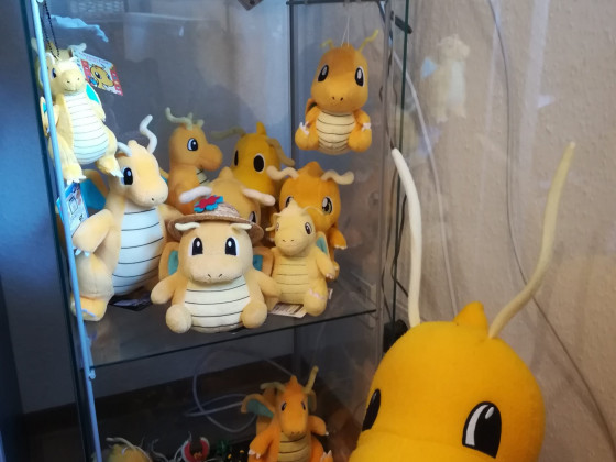 Dragonite Collector ♥