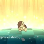 Shiny Cyndaquil/Feurigel, willkommen in der Familie!
