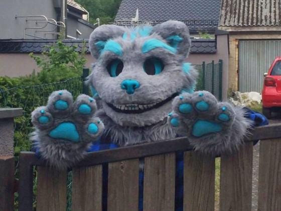 Ceshire Cat