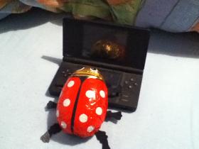 Käfer am DS