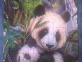 Liebe Pandas (Puzzle)