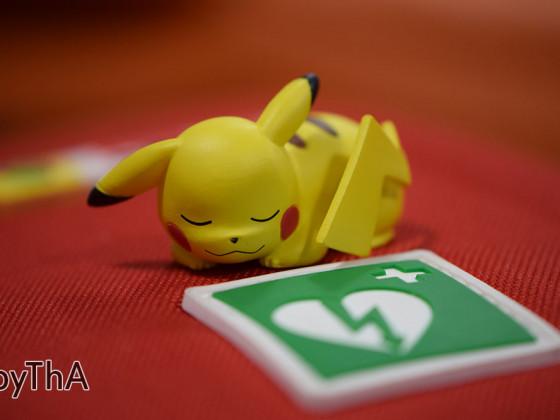 15-008.4 Pikachu the Rescuer