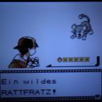 Random Shiny Rattfratz ♥