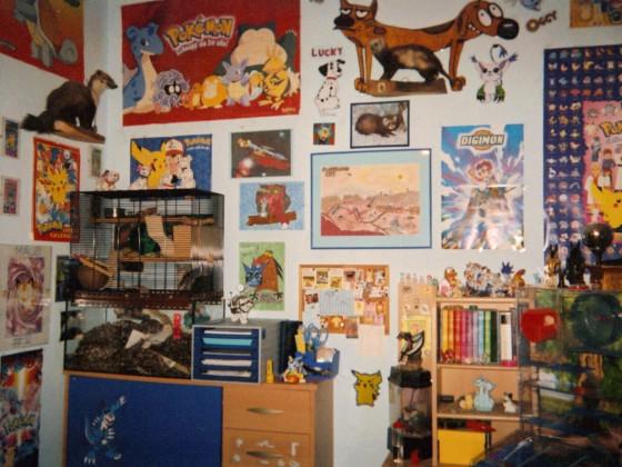Mein Zimmer vor vielen Jahren 2