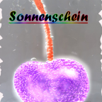 sonnenscheinl