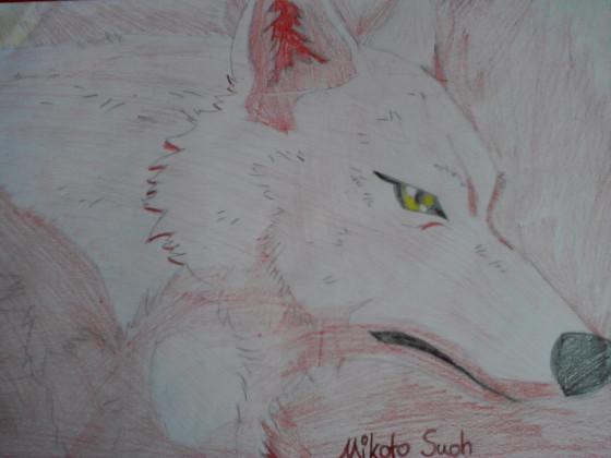 Mikoto_Wolf