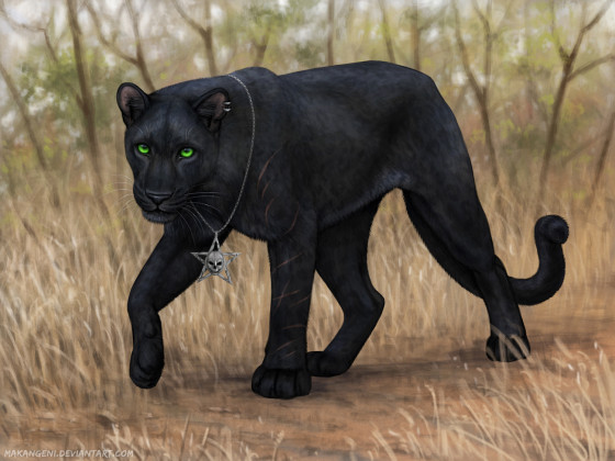 Rajani ~ Into the savannah