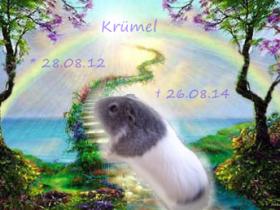 R.I.P. Krümel