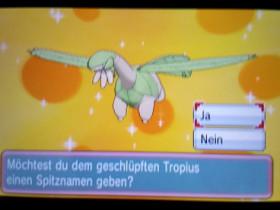Shiny Tropius