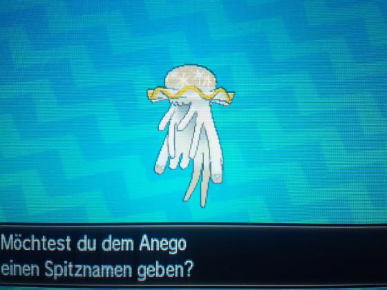 Shiny Anego