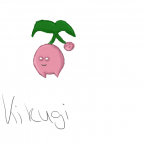 Kikugi
