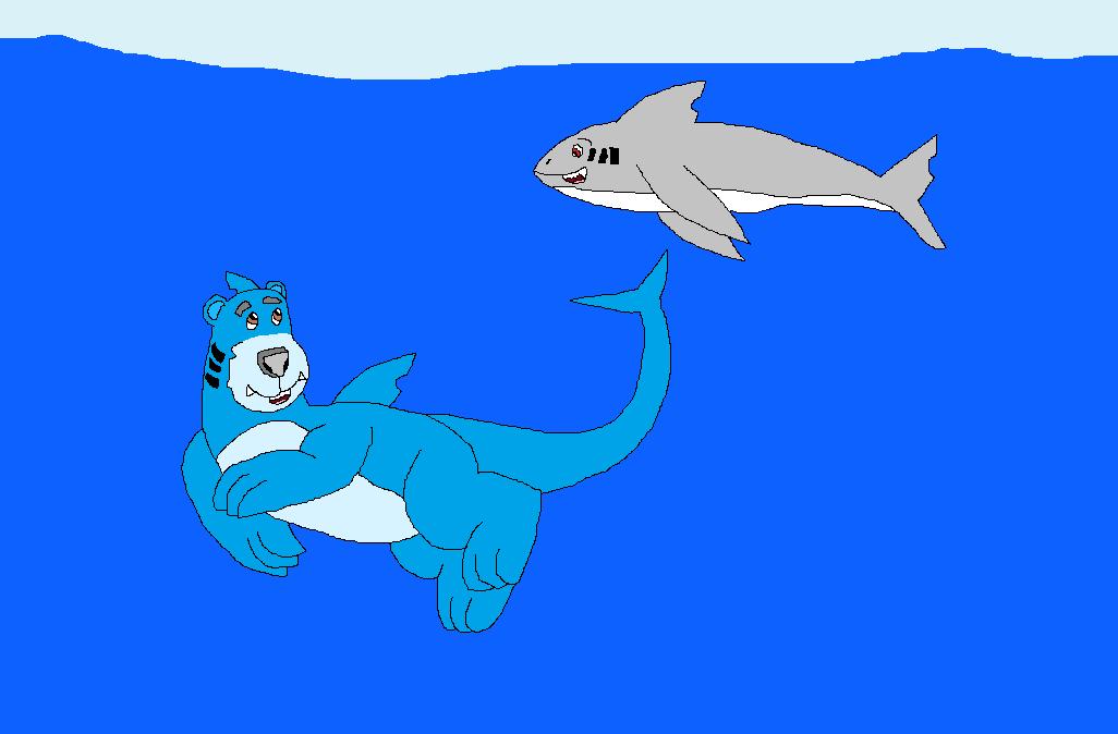 Wasser-Bär und Hai-Kumpel